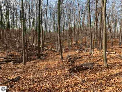 Lots And Land for sale in NHN PROUTY ROAD, Traverse City, MI, 49686