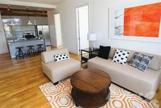 Apartment for rent in 335 Carroll Apartments - 3 Bedroom, 2 Bath, Brooklyn, NY, 11231