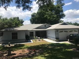 Single Family for sale in 7130 N Grackle Point, Hernando, FL, 34442