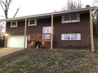 Single Family for sale in 2109 Brenda Lane, High Ridge, MO, 63049
