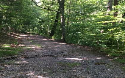 Lots And Land for sale in TR1&2 TWIGGS ROAD Lot tr 1 & 2, Young Harris, GA, 30582