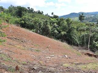 Single Family for sale in Km 0.8 CARR 770, Barranquitas, PR, 00794