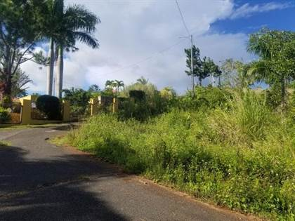 Residential Property for sale in 791 CARR, Cejas, PR, 00703
