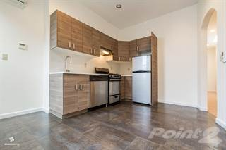 House for rent in 113 Schaefer Street - Unit 2, Brooklyn, NY, 11207