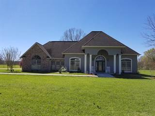 Single Family for sale in 124 Crabapple Lane, Carriere, MS, 39426