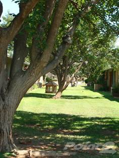 Apartment for rent in Homestead Apartments, Lubbock, TX, 79414