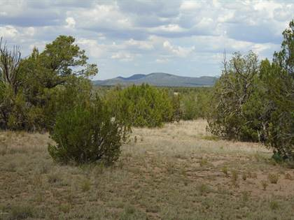 Lots And Land for sale in 1377 Sierra Verde Ranch  Lot #1377, Ash Fork, AZ, 86337