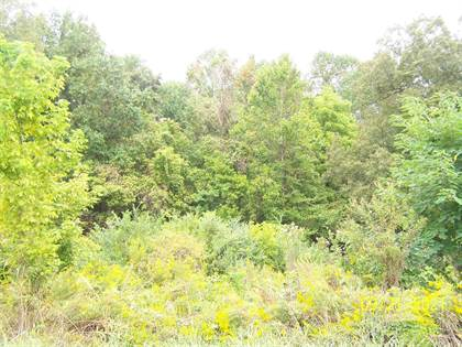 Lots And Land for sale in Harts Bridge, Jackson, TN, 38301