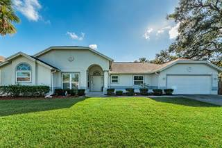 Single Family for sale in 161 LAKE SHORE DRIVE W, Palm Harbor, FL, 34684