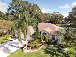 Single Family for sale in 16901 RAVEN RIDGE PLACE, Lutz, FL, 33549