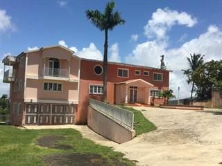 Single Family for sale in 49.1 BEATRIZ SECTOR LA CHARCA CARR. NUM. 1, KM. 49.1, Beatriz, PR, 00736