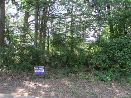 Lots And Land for sale in Vacant Dequindre, Greater Sterling Heights, MI, 48095