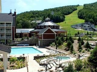 Condo for sale in 102 Forest Drive 330 Clay Brook at Sugarbush, Sugarbush Village, VT, 05674