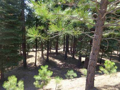 Lots And Land for sale in 401 Morningside Court, Lake Almanor West, CA, 96020