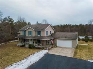 Single Family for sale in 5225 Maple Island Road, Sullivan, MI, 49415