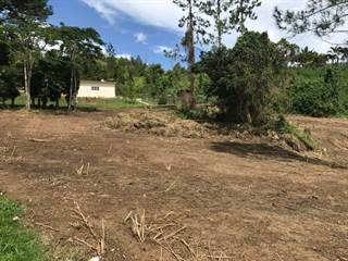 Single Family for sale in KM 48.8 BARRIO PASTO, Aibonito, PR, 00705