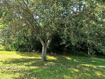 Lots And Land for sale in Lot 4 SW Tulip Sw Boulevard, Port St. Lucie, FL, 34953