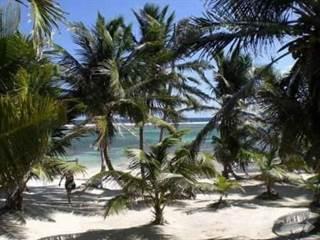Land for sale in Basil Jones, Ambergris Caye, Belize