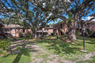 Apartment for rent in Watermarc - The Lily  - 1 BD / 1 BA, Lakeland, FL, 33803