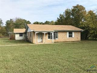 Single Family for sale in 1203 CR 2850, Pittsburg, TX, 75686