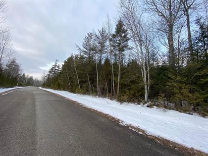 Lots And Land for sale in Timberway Drive Lot 159, Presque Isle, MI, 49777