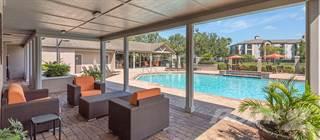 Apartment for rent in The Paddock Club Brandon, Brandon, FL, 33511
