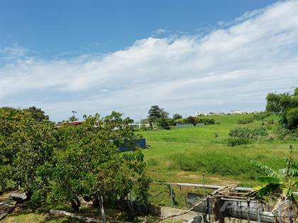 Residential Property for sale in Carr # 2 int, bo. Membrillo en Camuy, Greater Rossiter, PA, 15742