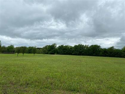Lots And Land for sale in 0 County Rd 2909, Dodd City, TX, 75438