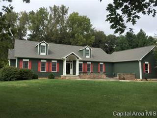 Single Family for sale in 16557 GRANDVIEW DR, Petersburg, IL, 62675
