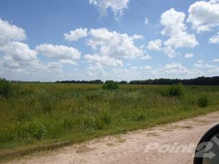 Farm And Agriculture for sale in CR 434, El Campo, TX, 77437
