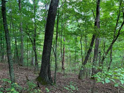 Farm And Agriculture for sale in 0 Skyline Drive, New Florence, MO, 63363