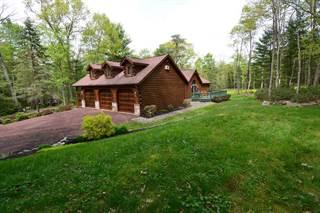 Single Family for sale in 87 Log Cabin Lane, Greater Renovo, PA, 17745