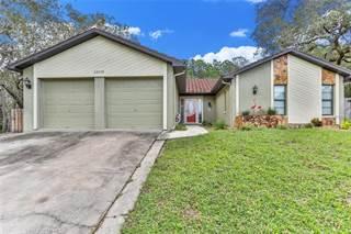 Single Family for sale in 12119 FOLGER STREET, Spring Hill, FL, 34609
