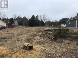 Land for sale in 13 South Road, Bay Roberts, Newfoundland and Labrador, A0A1X0