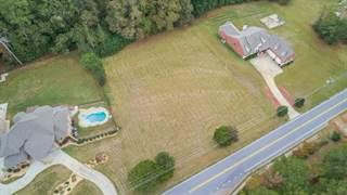 Land for sale in 4030 W Stubbs Road, Atlanta, GA, 30349