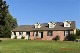 Single Family for sale in 13 Burning Tree, Jackson, TN, 38305