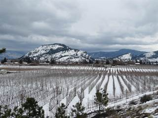 Farm And Agriculture for sale in 10510 Jones Flat Road, Summerland, British Columbia, V0H 1Z3