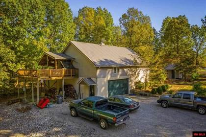 Multifamily for sale in 41 & 44 TREVER LANE, Lakeview, AR, 72642