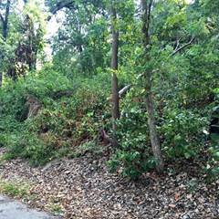 Land for Sale Delaware County, OK - Vacant Lots for Sale in