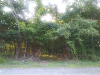 Land for sale in WILSON AVE, East Stroudsburg, PA, 18301