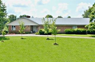 Single Family for sale in 320 Sturgis Road, Marion, KY, 42064
