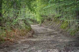 Land for sale in 00 RUSSELLVILLE RD., Yazoo City, MS, 39162