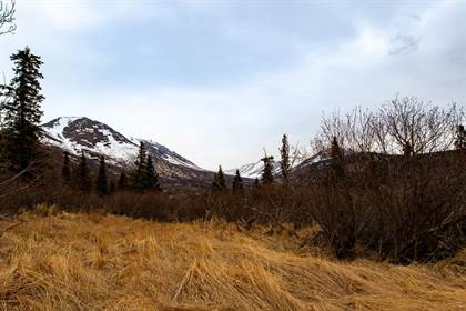 Lots And Land for sale in Lot 4 Pathfinder Circle, Anchorage, AK, 99516