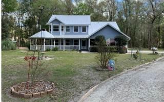 Single Family for sale in 3509 280TH STREET, Branford, FL, 32008