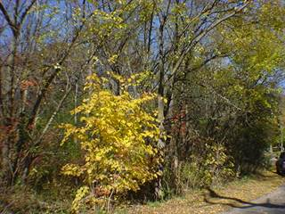Land for sale in 222 North Brookdale Lane, Palatine, IL, 60067