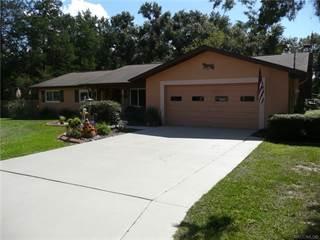 Single Family for sale in 3538 E Delight Street, Hernando, FL, 34442