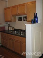 Apartment for rent in 5202-16 N. Damen / 2000-10 W. Foster - 1 Bedroom - 1 Bath  Vintage - Damen, Chicago, IL, 60607