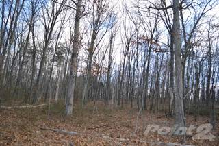 Land for sale in Greenwood Rd., Cross Junction, VA, 22625