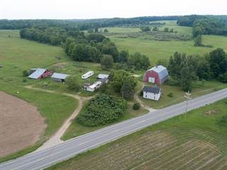 Farm And Agriculture for sale in 7740 Old State Road, Stanwood, MI, 49346