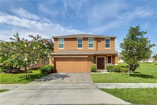 Single Family for sale in 5913 WINDSONG OAK DRIVE, Leesburg, FL, 34748